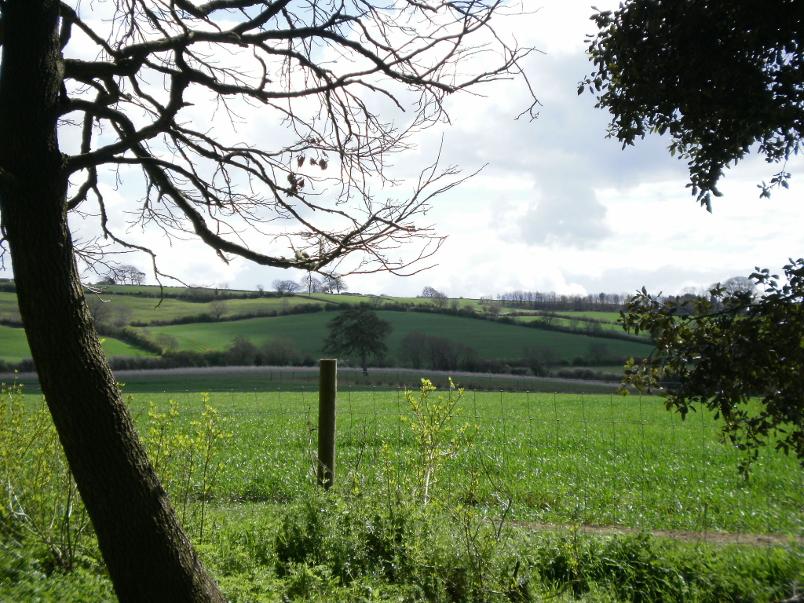 Vista from Hidcote Manor