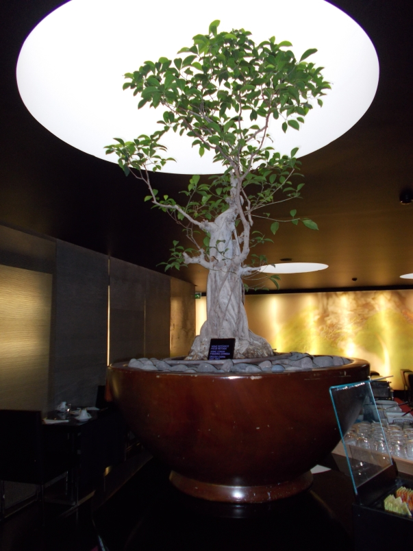 Entrance to Bonsai Restaurant