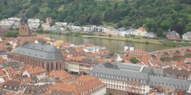 Heidelberg Feature