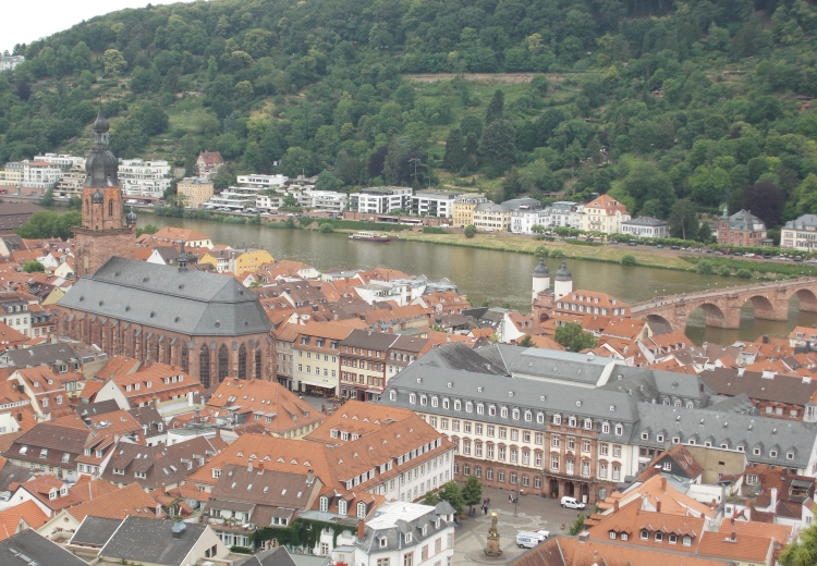 Heidelberg Feature