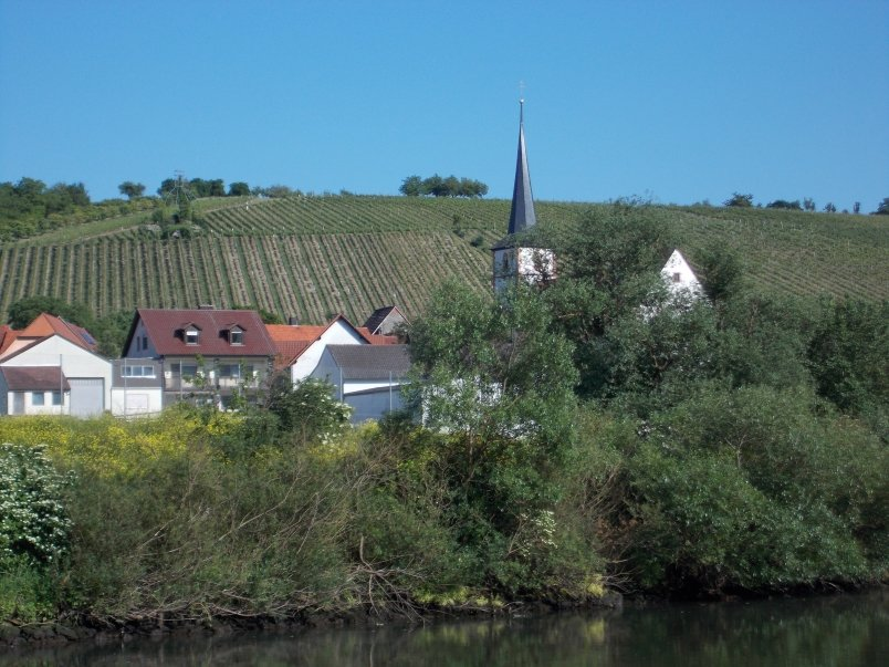 Vineyards and Spires on the Main River