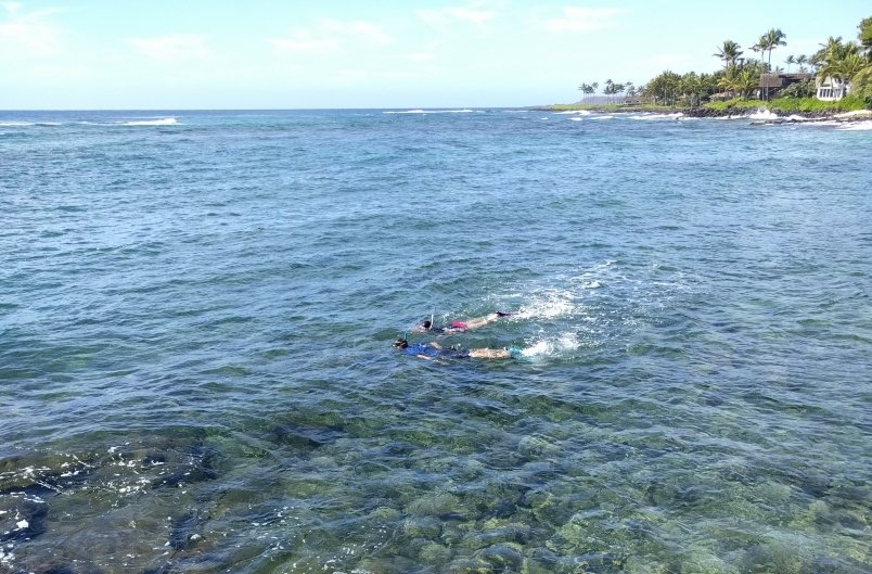 People Snorkeling at Lawai Beach