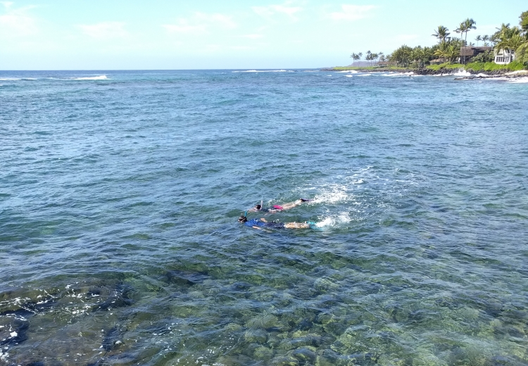 Snorkeling at Lawai Beach.Feature