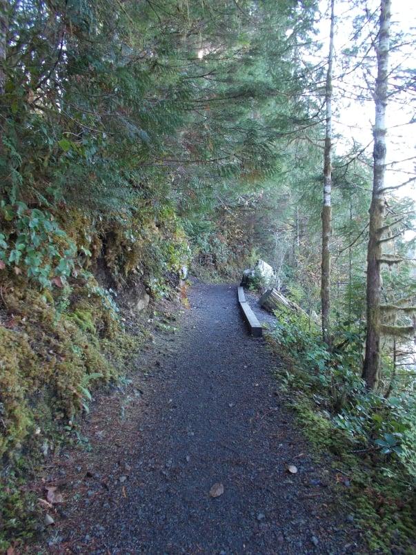 Lakeside Trail Lake Quinault Lodge