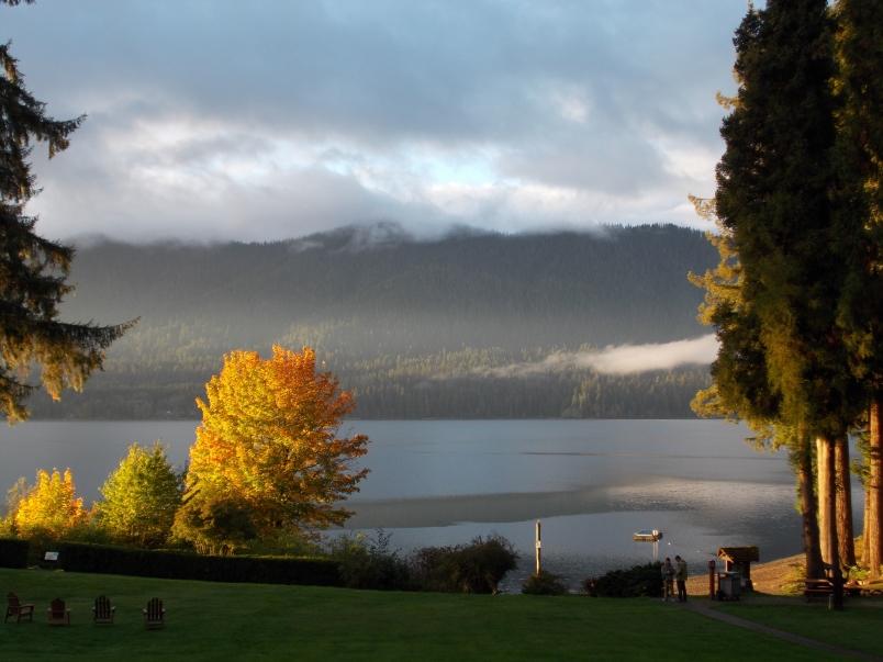 Morning at Lake Quinault Lodge