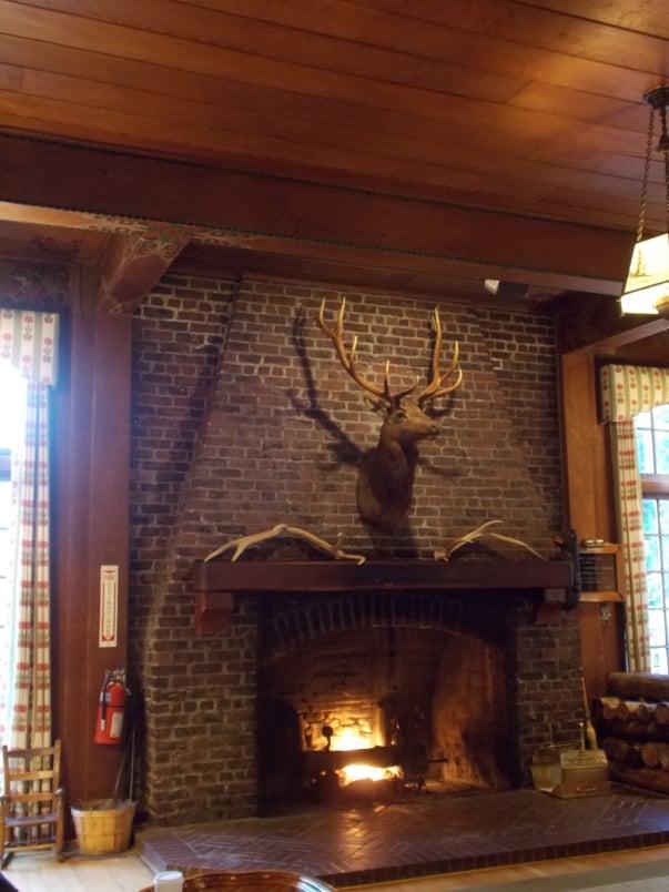 National Park Lodge Ambience Lake Quinault2