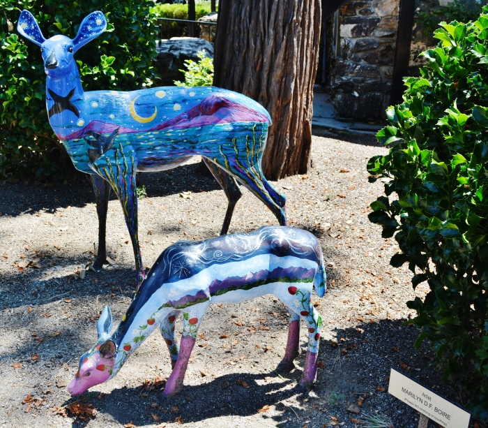 Painted Deer Project