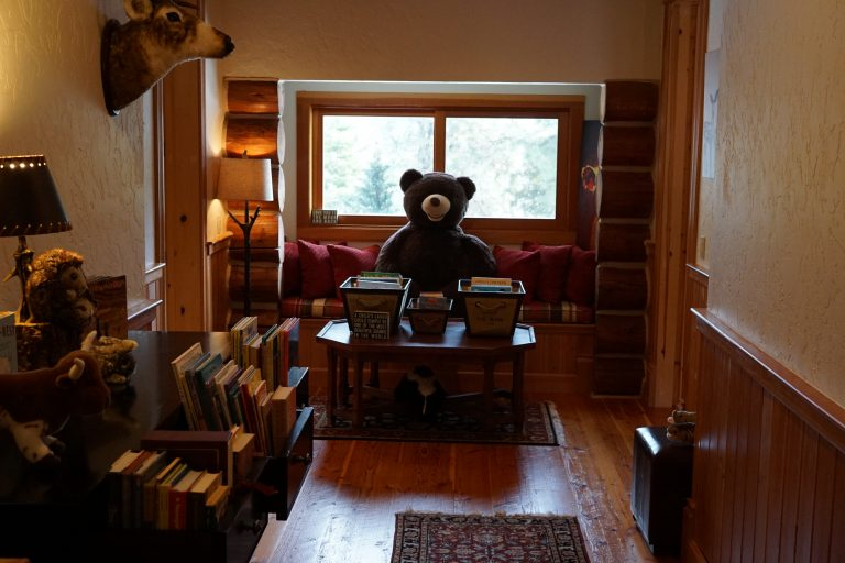 Grand River Lodge Kid's library