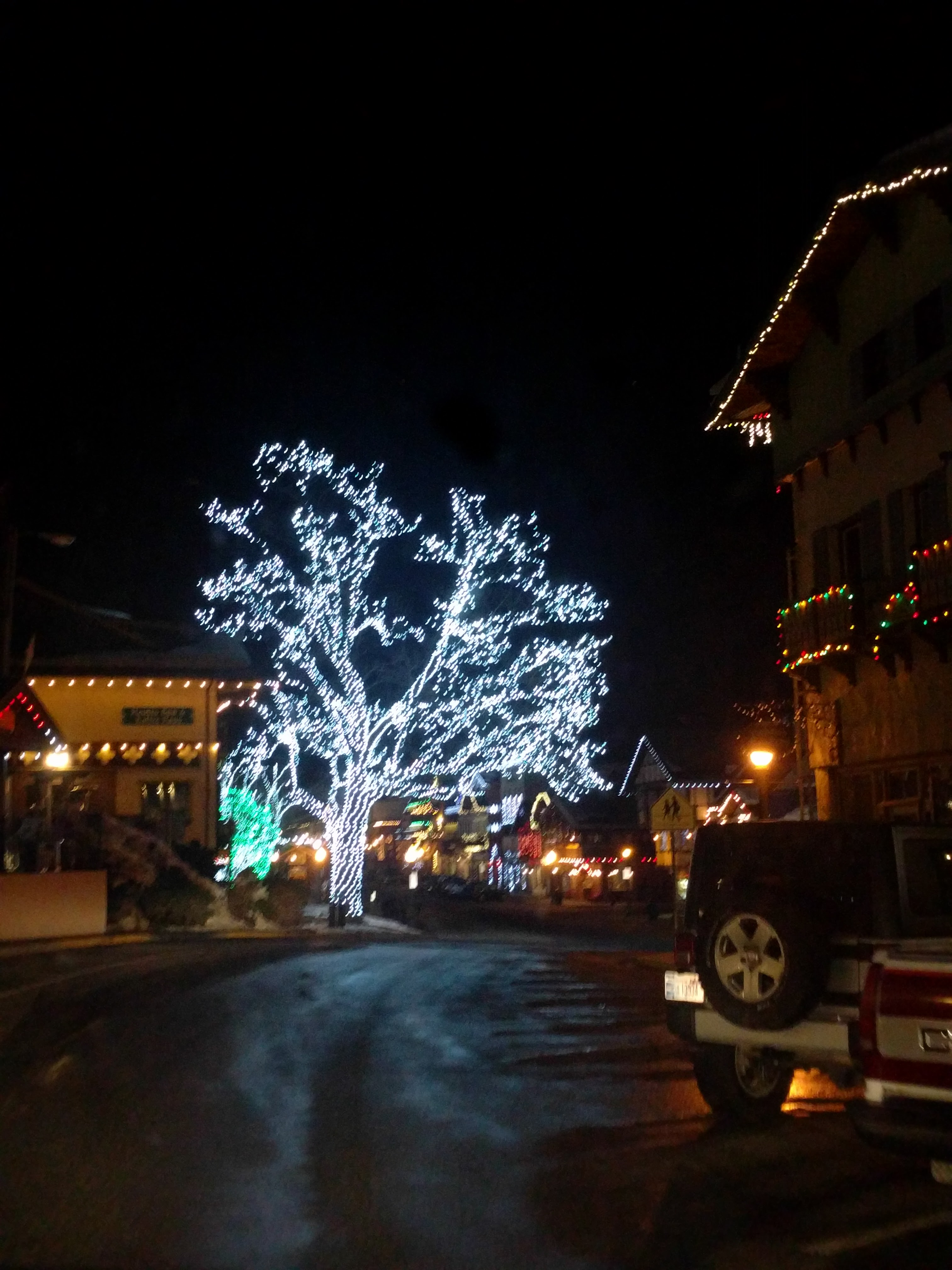 Leavenworth tree hearts