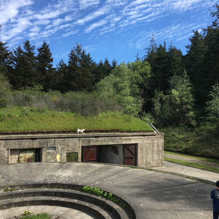 Bunkers at Fort Worden