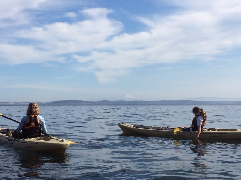Kayaking with Mt. Baker in the distance