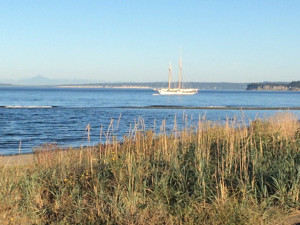 View from one of the many Port Townsend beaches