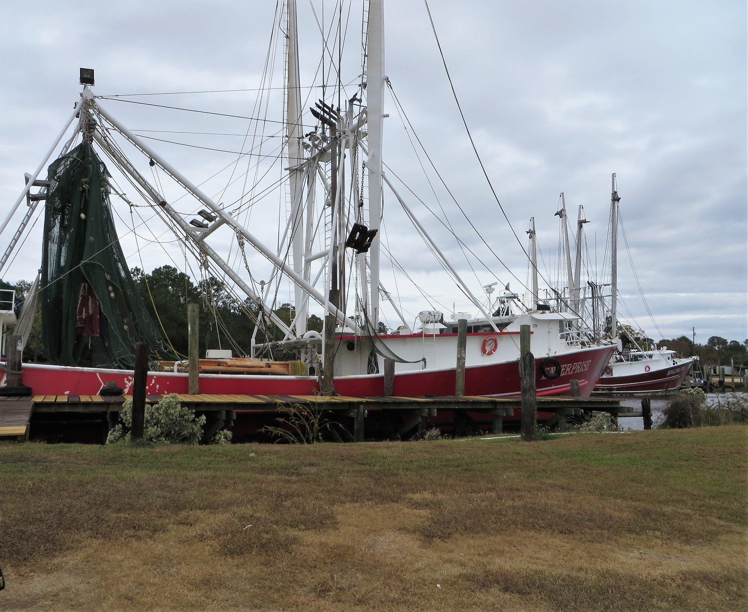 Abundant Seafood In The Land Of Forrest Gump Bayou La Batre A Shrimp Boat Has Just Delivered Fresh Catch