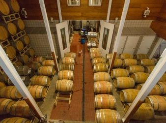 Barrel Room at Jonathan Edwards Winery