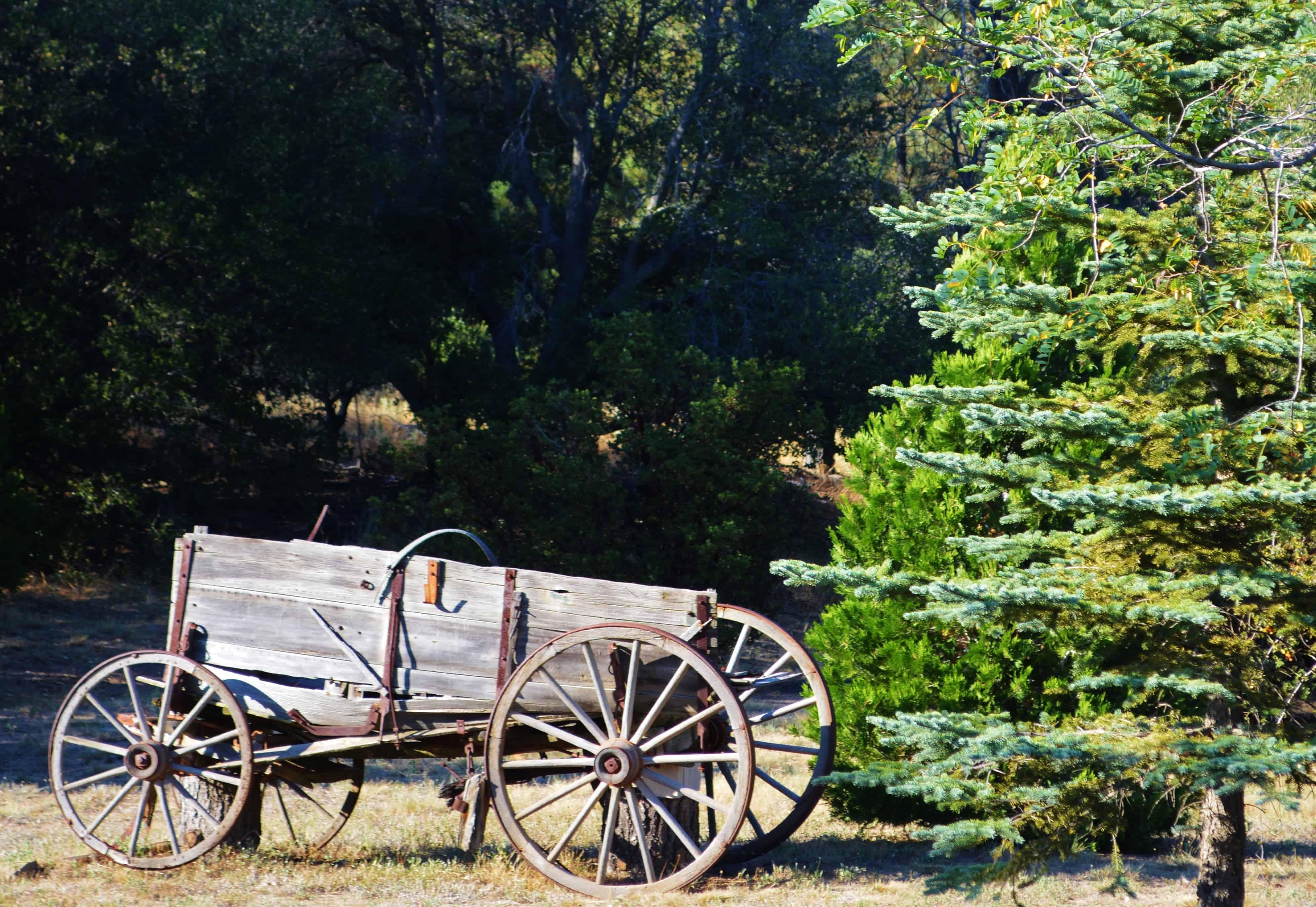 Old Wagon in Julian California