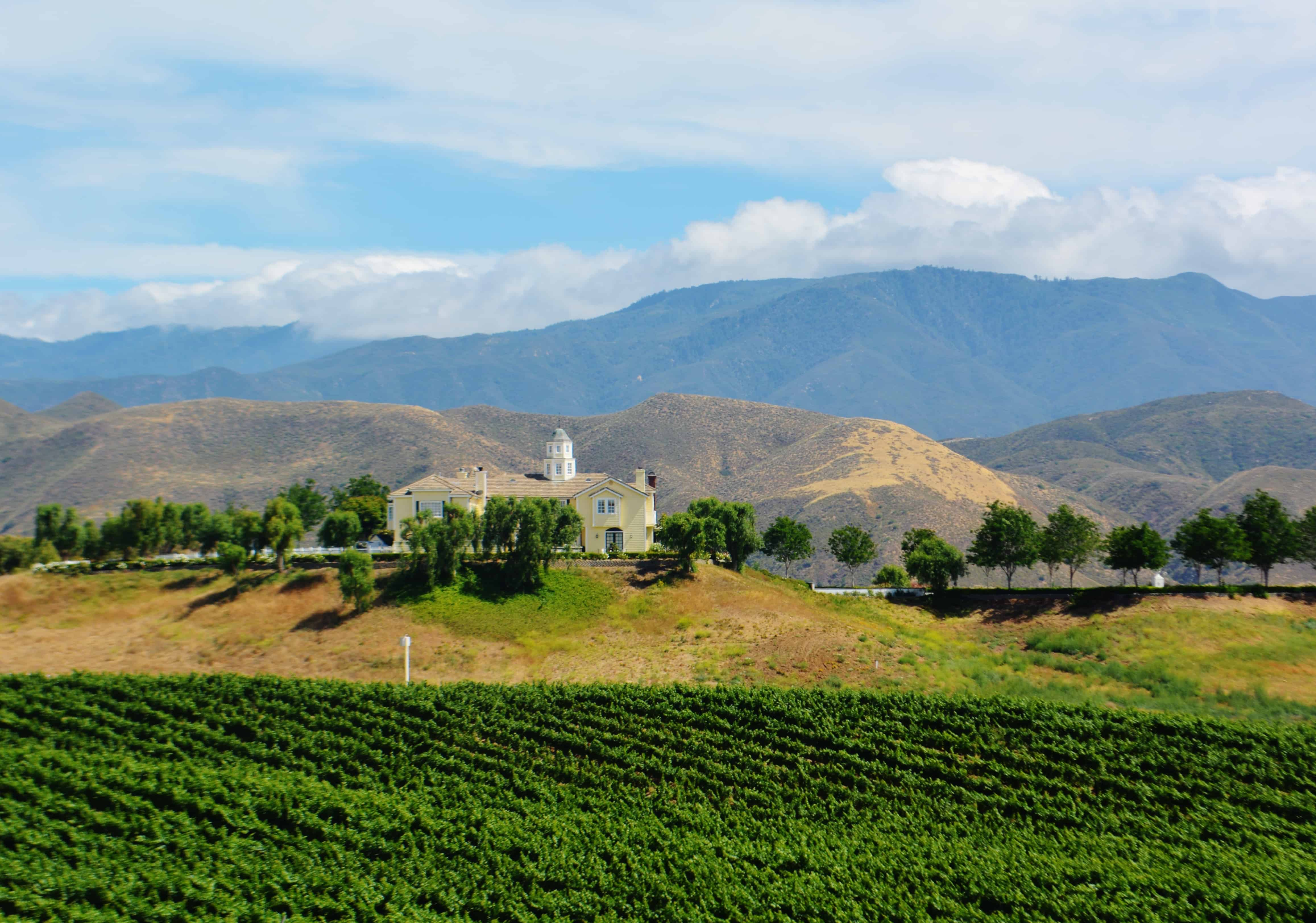 Winery and Mountain Views in Temecula California