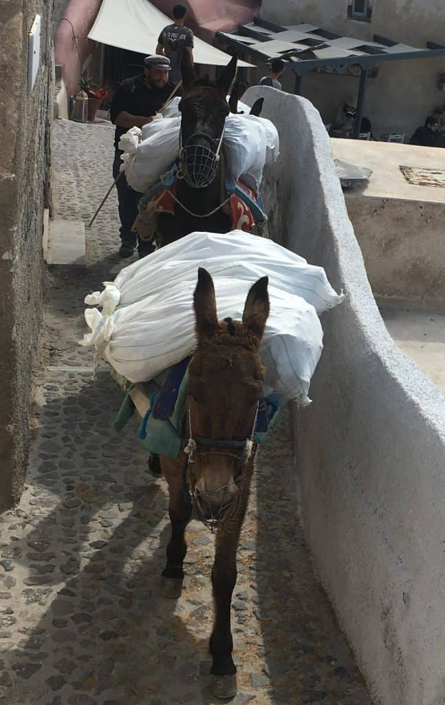 Mules Streets in Oia