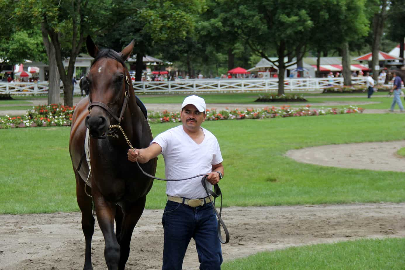 Horse is the star at Saratoga Race Course