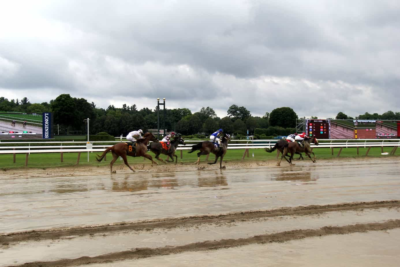 Racing in the Rain Saratoga Race Course