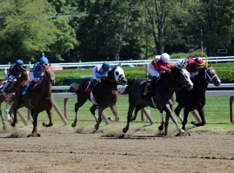 And They're Off at Saratoga Race Course