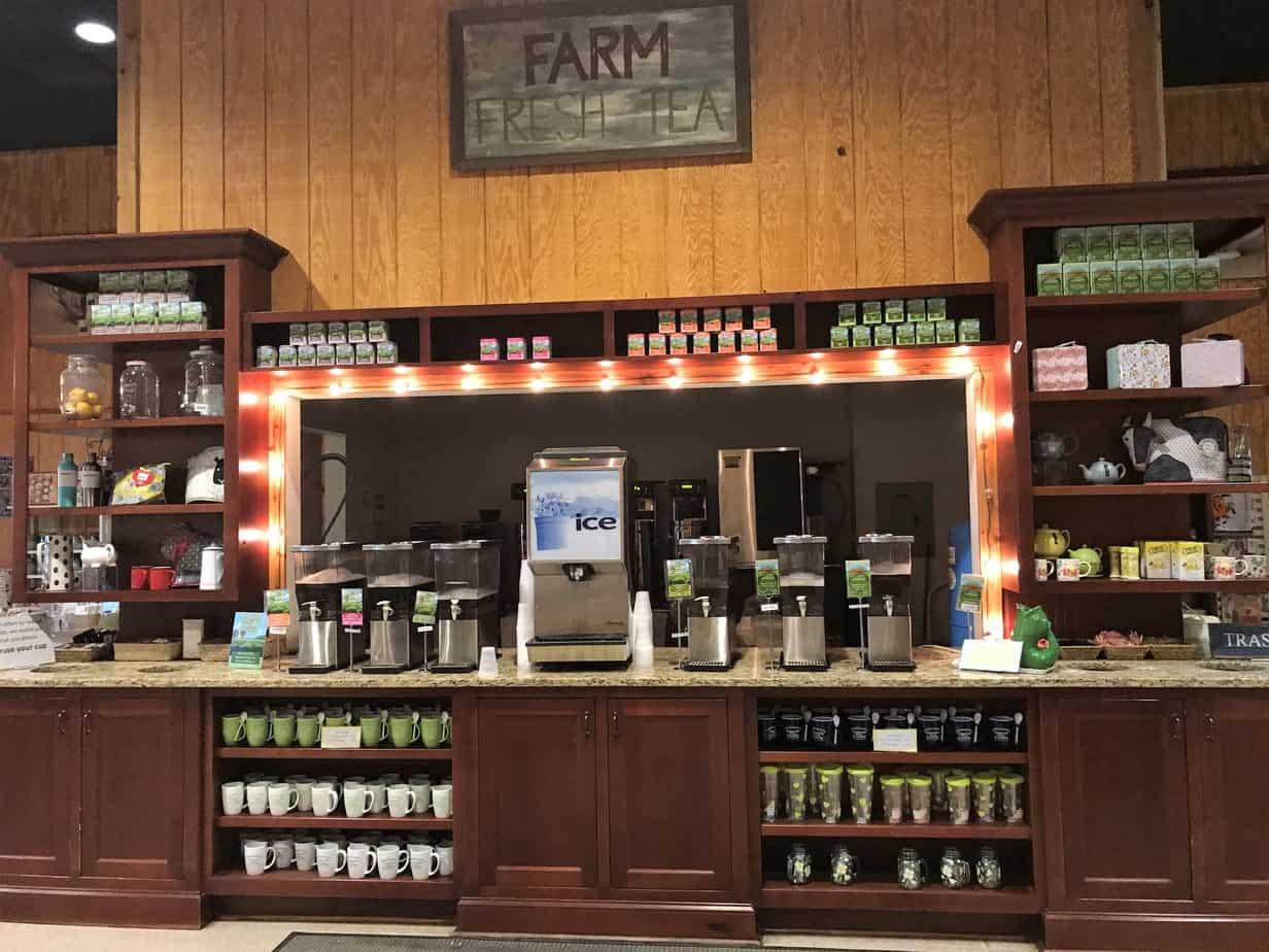Visiting Charleston South Carolina - tasting station at Charleston Tea Plantation