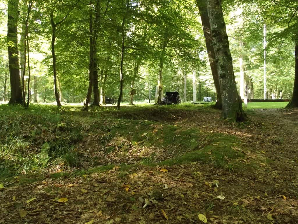 The landscape in Belleau Wood is today pockmarked by shell holes