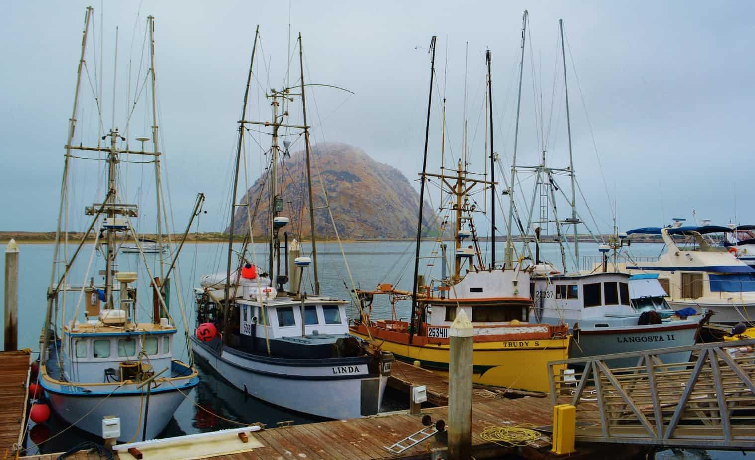 Fishing Fleet & Morro Rock