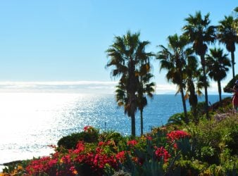 Laguna Beach OceanView