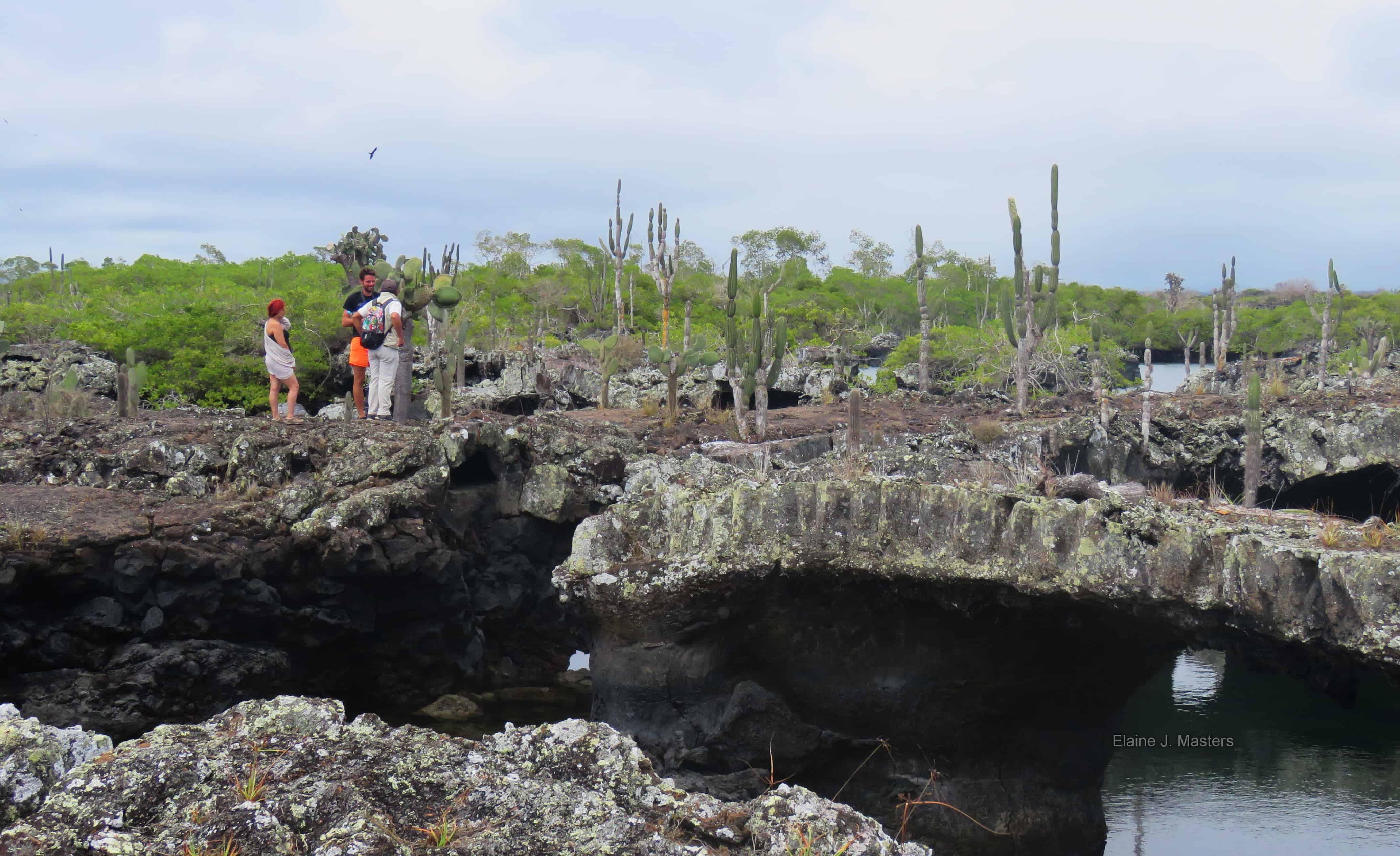 Isabela Island Volcanic Cave Tour Galapagos Islands