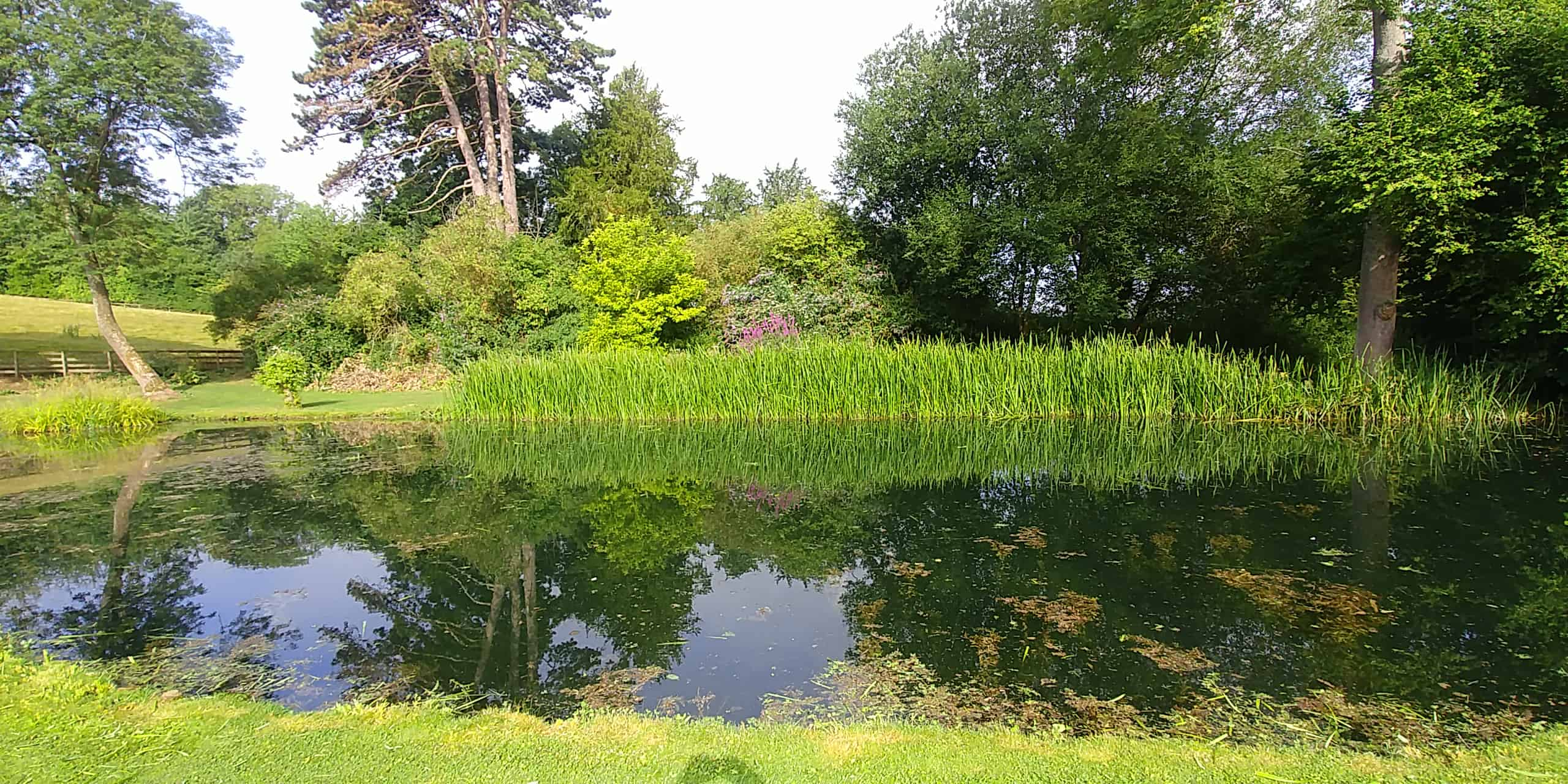 The pond and gardens at Wythall Estate, Ross-on-Wye England