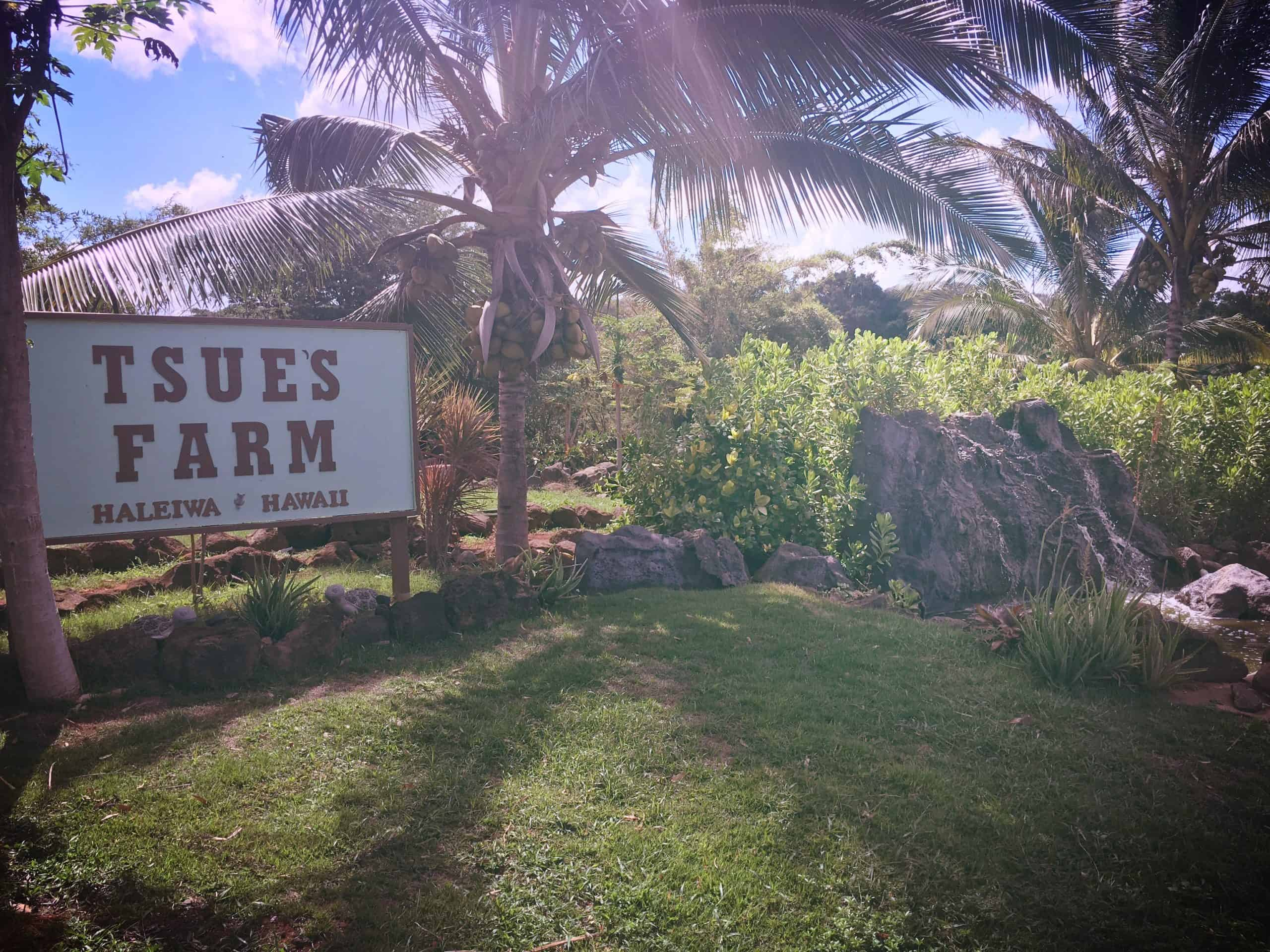 Sign in front of Tsue's Farm